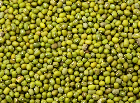 Mung bean background photo