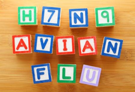 avian: H7N9 avian flu toy block