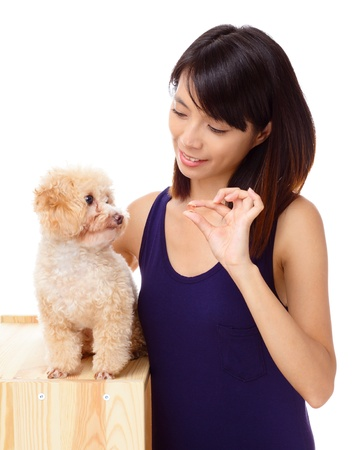 Asian woman feeding poodle photo