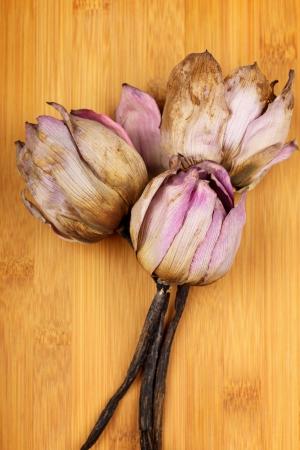 spiritless: Bouquet of dead lotus