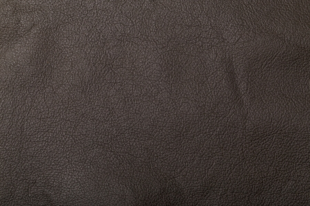 Grained leather texture Stock Photo - 21276230