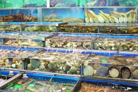 Fish tank in market at Hong Kong photo