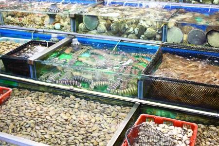 Seafood market fish tank in Hong Kong Stock Photo - 21608536