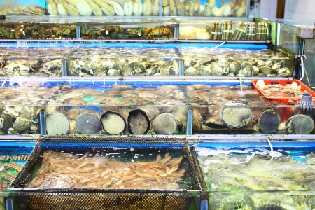 Seafood market fish tank in Hong Kong Stock Photo - 21608537