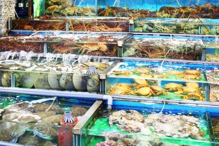 Seafood market fish tank in Hong Kong Stock Photo - 21707735