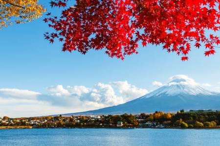 landscape: Mt. Fuji in autumn
