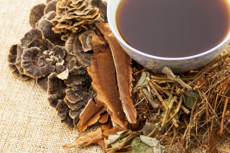 chinese herbal medicine: Traditional chinese herbal medicine
