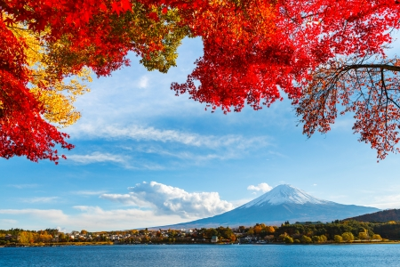 Гора Fuji осенью Фото со стока