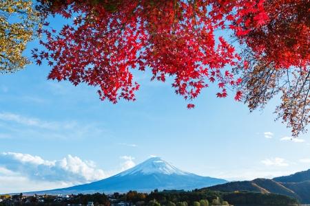 Mt. Fuji in autumn Stock Photo - 22644314