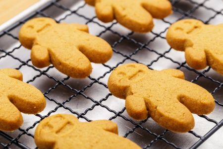 gingerbread cookies: Homemade gingerbread cookies