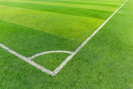 Soccer football field stadium grass line photo