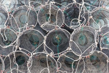 pesquero: Las trampas para la pesca de captura y mariscos Foto de archivo