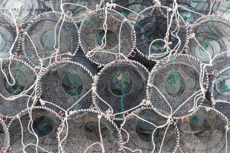fisheries: Traps for capture fisheries and seafood