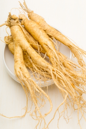 Ginseng with white background photo