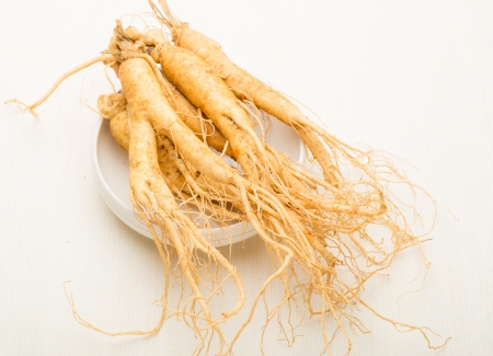 Ginseng stick on white market photo