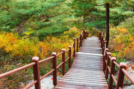 Wooden hiking path to the mountain photo