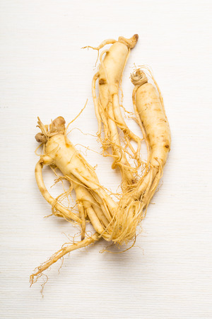 ginseng: Fresh Ginseng Stock Photo