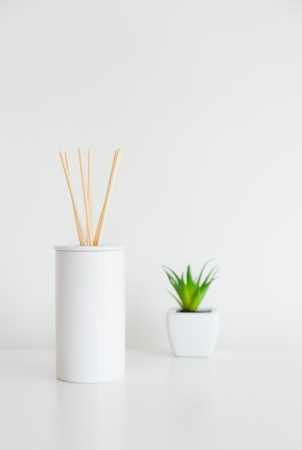 House perfume scent diffuser and green plant photo