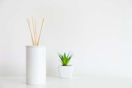 House diffuser and green plant photo