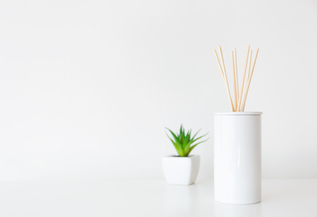 Home diffuser and potted plant photo