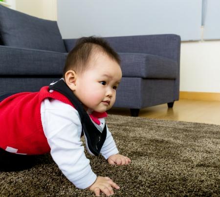 bebe gateando: Bebé arrastrándose en casa