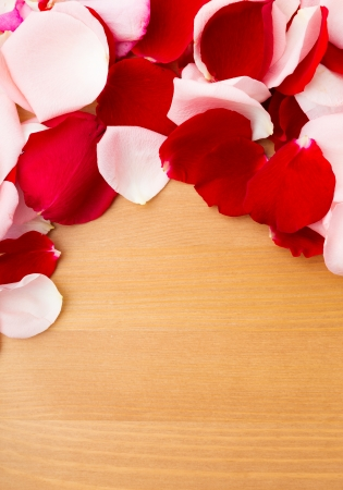 Rose petal over the wooden background photo