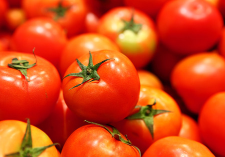 Group of tomato