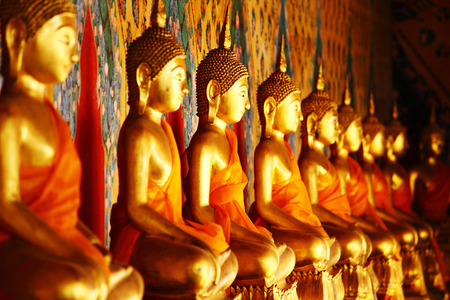 sri: Row of golden buddha statue