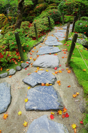 Pebble stone path with maple leaves in Japan garden