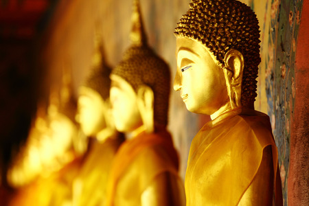 Row of golden buddha statue photo