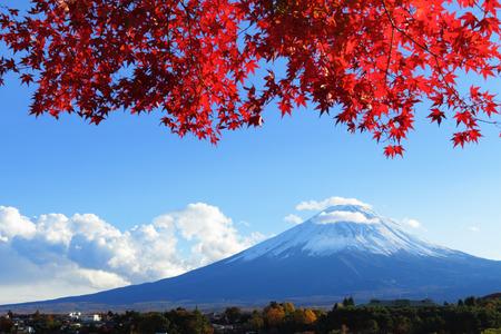 Mountain Fuji with maple tree photo