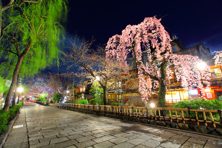 Gion in Kyoto photo