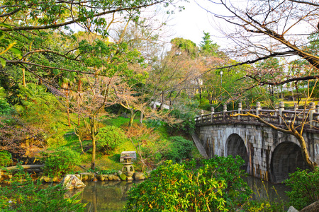 Japanese garden with bridge photo