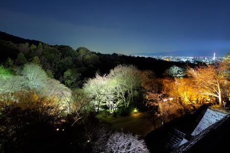 dera: Kiyumizu dera temple at night
