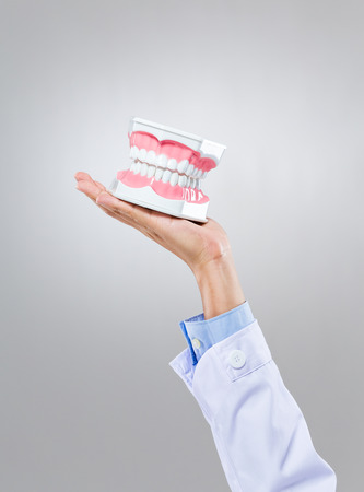 Dentist hold with denture photo