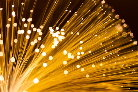 Fibre Optic Light  photo