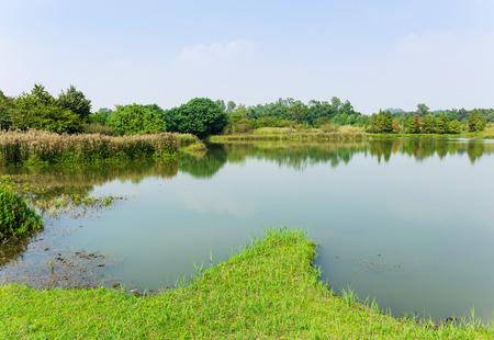 Fish hatchery pond photo