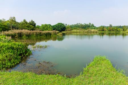 fishery: Fishery wetland