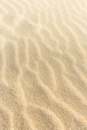 raspy: Sand background