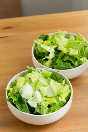 lettuces: Fresh lettuces