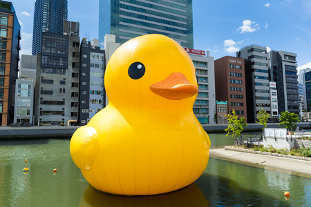 backgraound: Japan osaka - september 19: big rubber duck with building backgraound in nakanoshima park on sepetmber 19 2015. giant rubber duck sculpture by florentijn hofman.