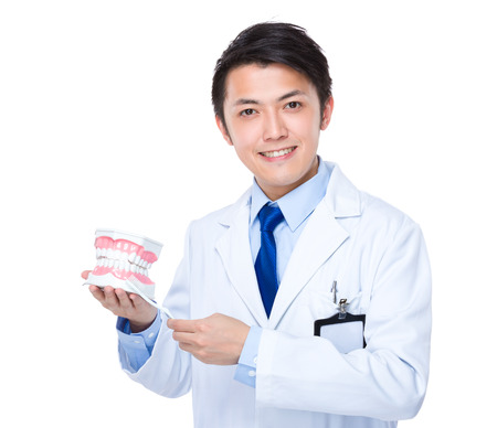 denture: Dentist holding with denture and toothbrush