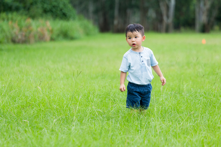 seek: Little boy play hide and seek at park Stock Photo