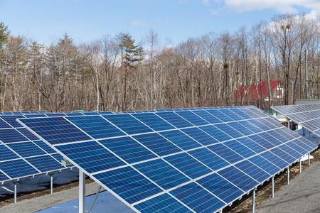 panel: Solar panel plant