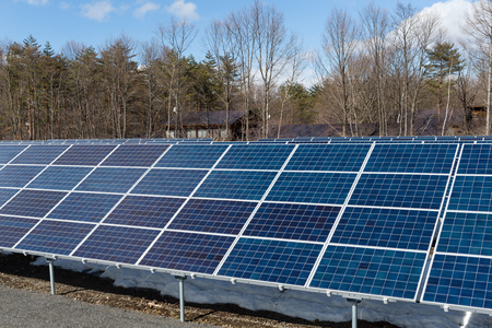 clear day in winter time: Solar panel in forest Stock Photo