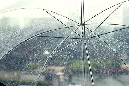 Transparent umbrella in rainy day Standard-Bild