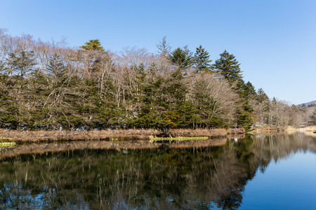 placid water: Beautiful lake