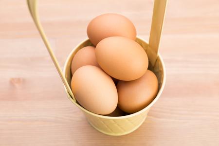chicken egg: Chicken Egg Stock Photo