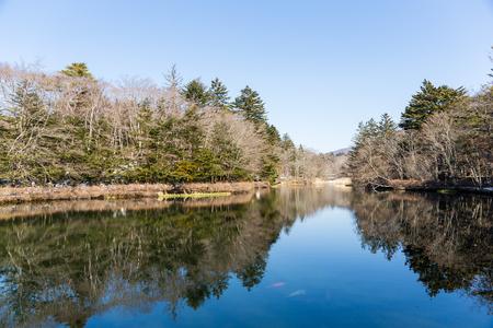placid water: Lake in winter