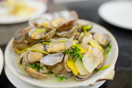portuguese: Portuguese clam Stock Photo